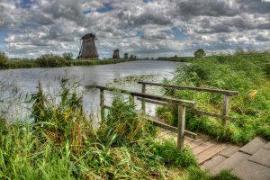 Kinderdijk_6859